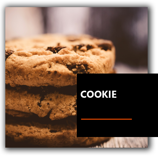 Cookie - Francesco BrioWeb Russo Consulente Marketing | Neuromarketing | Coaching | Leadership | Venezia